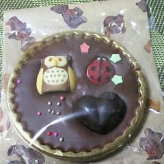孫とお出かけ/ストロベリータルト/チョコレートムースケーキ/チョコレート/スイーツ/わたしのお気に入り お気に入りの近所のケーキ屋さんへ。 今日…