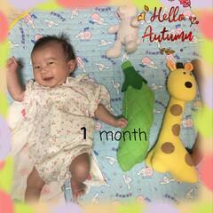 赤ちゃんのいる暮らし/1ヶ月になりました おはようございます。 秋を感じるこの頃で…