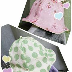 ベビーチューリップハット/春のフォト投稿キャンペーン/令和の一枚/LIMIA手作りし隊/ハンドメイド/わたしの手作り 令和になりましたね。 昨日孫の為の、帽子…