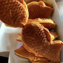 鯛焼き/つぶあん/チョコレート/抹茶/カスタード 鯛焼きを食べる前に 必ずやる坊ではなく、…(1枚目)
