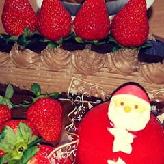 生チョコケーキ/アイスケーキ/大成功/時間との戦い/頑張ったおうちごはん/MerryX'mas/... 皆様、merryX'mas🎄😋🍴  前回…(5枚目)