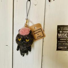 猫/羊毛/猫派/犬派/雑貨/DIY 羊毛フエルトのヤンキー猫  青森市で活動…