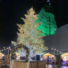 ツリー/アスパム/クリスマス/青森市/クリスマス2019/フォロー大歓迎 青森県青森市に  アスパムという建物が海…