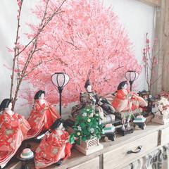 umeco/タペストリー/桜/雛人形/ひな祭り/フォロー大歓迎/... 明日はひな祭りですね  私のDIYの男前…