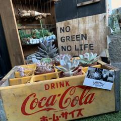 コカコーラ/古い物/雑貨/DIY/100均/ダイソー/... イベントでコカコーラの箱GET  両脇だ…