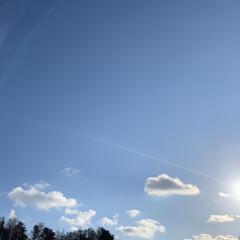 八甲田山/スキー場/スキー/モヤ/青森市/冬 青森は雪が多いので冬休みが少し長めです …
