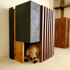 キャットハウス/犬小屋/猫家具/猫/犬/ペット/... 新作の犬猫ハウス、実際に作ってみました。…(2枚目)