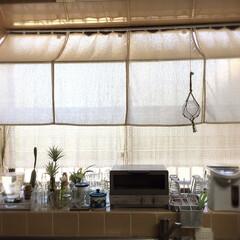 日差し/カーテン/窓/キッチン/陽射し避け/百均材料/... 朝から強い夏の日差し 光を優しく取り込ん…