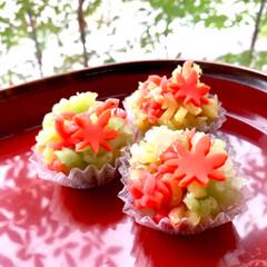 和菓子/フード 紅葉狩りと、いけそうにないので、、 和菓…