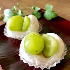 秋の味覚/和菓子/フード