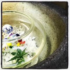 ガラス/水 金魚鉢とビー玉&浮き玉