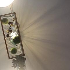 エジソン電球/フェイクグリーン/DIY/雑貨/100均/セリア/... 新たな照明器具が欲しい…  そして!! …