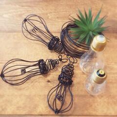 ワイヤー/フェイクグリーン/ハンドメイド/ワイヤー電球/ワイヤークラフト/100均/... ハンドメイド✨ワイヤー電球 作るたびに(…(1枚目)