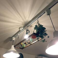 LEDエジソン電球/エジソン電球/照明 リビングの照明の電球をLEDエジソン電球…