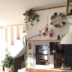 木漏れ日/ナチュラル/クリスマスツリー/サンタ/リビング/フェイクグリーン/... ここに越してきて12年 その頃から左奥の…