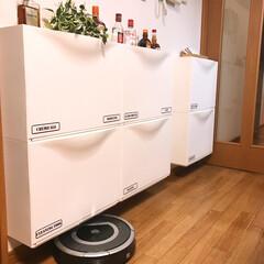 DIY/収納/掃除/イケア/ダストボックス/IKEA イケアのシューズボックスを使った壁収納と…