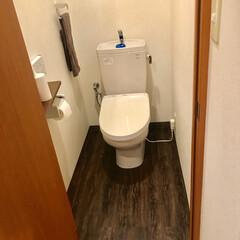 トイレ/床デコ/床リメイク/ウォルナット 床デコ使用例