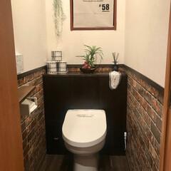 DIY/トイレ/タンクレス/腰壁/腰板/ウォールシート/... トイレタンクレスDIY & 腰壁風ウォー…