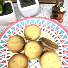 クッキー/いちごバターサンド/いちごバター/相葉マナブ/スイーツ/ハンドメイド 日曜日の相葉マナブ📺でイチゴバターを作っ…(1枚目)