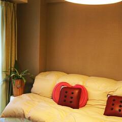 0円で出来る自分だけの納得ソファー ベッドにお布団で背もたれ付けて(敷き布団…