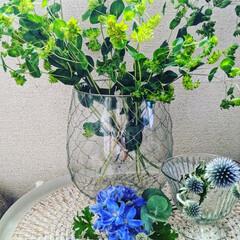 ガラス雑貨/花が好き/涼を感じる/花のある暮らし/おすすめアイテム 今日から7月。 ジメジメムシムシとする季…