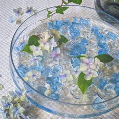 アクリルストーン/ガラス/初夏/涼しげ/涼/フローティングフラワー/... 子どもが昔にとってきた、ゲーセンのアクリ…