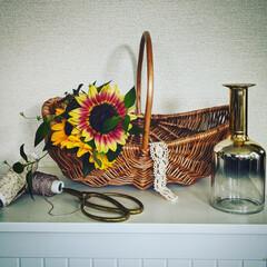 夏の花/ナチュラルインテリア/ひまわり/花のある暮らし/雑貨/インテリア お久しぶりです。 夏と言えばひまわり🌻 …
