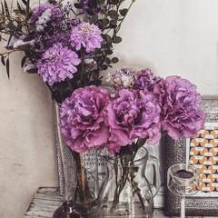 花が好き/花に癒やされる/ガラス雑貨/花のある暮らし/暮らし この前届いた花束をバラいてみました。