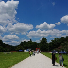 風景/旅 京都にある上賀茂神社の旅  開放感ある空…