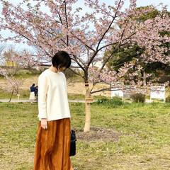 春コーデ/mama/桜/春/ファッション 早々とさいていた桜と🌸 満開もことしは早…