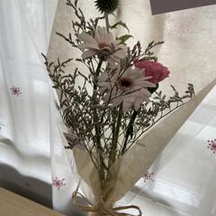 mama/ママ/母の日/暮らし/花のある暮らし 母の日にこどもたちと ささやかながらお花…(1枚目)