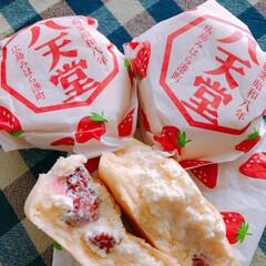 苺/八天堂のクリームパン お土産で頂いたクリームパン✨  苺クリー…