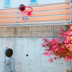 DIY/クリスマスプレゼント/小学生/バスケットゴール フェンスにバスケットゴール取付け 完了♡…