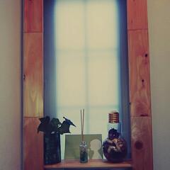 強力両面テープ/ボンド/プラダン/窓枠/DIY 短い木材がいっぱいあったので窓枠作ってみ…