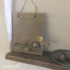 セルフリノベーション/シンプル/ニッチDIY/漆喰壁/DIY ニッチdiy…