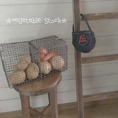 焼き網リメイク/野菜ストック/DIY/100均/ダイソー/キッチン/... 100均の焼き網を使って… 野菜ストック…