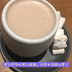 チョコレート専門店/カカオ豆
