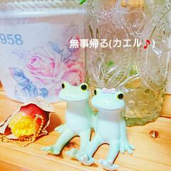 カエル/ラブラブ/無事カエル/癒し/緑色 仲よしカエルちゃんを見つけました‼ 「安…