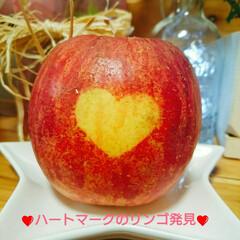 珍しい/発見/フルーツ/ハート/りんご スーパーのフルーツコーナーで「ハート❤模…(1枚目)