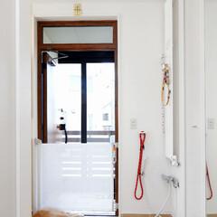 愛犬家住宅コーディネーター/飛び出し防止/飛び出し防止ゲート/ロールスクリーンゲート/玄関シャワー/リードフック/... 玄関には、散歩から帰った際に愛犬の足をき…