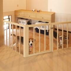 愛犬家住宅/テラコッタ/テラコッタタイル/上げ下げ窓/ケージ/愛犬用スペース/... 1階のLDと隣の和室、そして玄関まで含め…