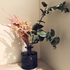 ドライフラワー 作成/花瓶/ドライフラワー 稲穂のピンク可愛い。