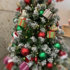 ベルモール/ショッピングモール/クリスマスツリー/クリスマス 今年から、わが家のツリーはやめたので(笑…