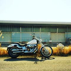 ハーレー/バイク 今日は暖かかったのでバイクで大黒ふ頭に行…