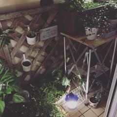 ベランダ/ガーデン/菜園/ライトアップ 一畳くらいしかない、LDKのベランダ ミ…
