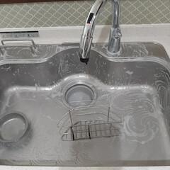 ハイホーム 400g×2個セット クレンザー エコクリーナー 汚れ落とし キッチン 大掃除 エコ 汚れ 綺麗 eco 石鹸 天然(クレンザー)を使ったクチコミ「キッチンのシンクをぴかぴかにしました✧ …」(2枚目)