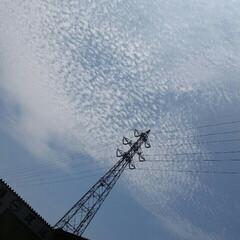 夏空 空が好き✾ 小さい雲の集まり! 初めて見…