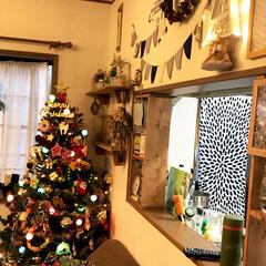 ツリー/クリスマス/DIY/雑貨/100均/セリア/... 今年もようやく出しました🎄 昔ながらのツ…