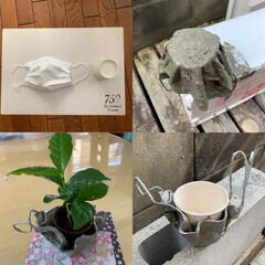 セメント鉢/マスク/ハンドメイド/DIY 《福岡/自宅で工作(DIY)》  使い捨…
