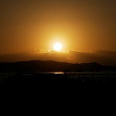 元旦/景色/初日の出/お正月/おでかけ 初日の出みてきました! なかなかうまく撮…